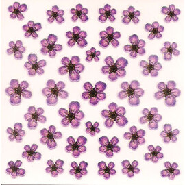 Dried Flowers 3D Nail Stickers